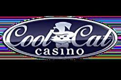 Cool Cat Casino Bonus Codes No Deposit Bonus Codes Free Spins